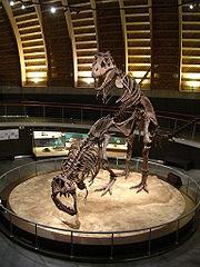 Sur La Terre Des Dinosaures : Les lutins des glaces